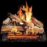BBQGUYS 24 Inch Grand Mountain Split Oak Vented Natural Gas Log Set + H-Burner - Match Light