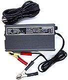 Schauer Golf Cart Battery Maintainer 48 Volt