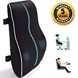 Lumbar Support Pillow for Office Chair Memory Foam Back Cushion for Back Pain Relief Improve Posture Large Back Pillow for Car, Computer Chair, Recliner Breathable Mesh Cover Double Adjustable Straps