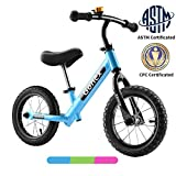 Gonex Kids Balance Bike 12 Inch No Pedal for 2 3 4 5 Years Old Boys Girls Starter Toddler Training Bike with Hi-Ten Steel Frame & Inflatable Rubber Tires, Blue