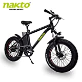 nakto 20' Electric Bike Fat Tire Mountain Ebike 300W Electric Bicycle with 36V10A Lithium Battery (300W36V10A)