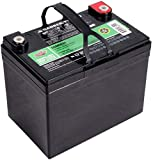 Interstate Batteries 12V 35AH Sealed Lead Acid (SLA) AGM Deep Cycle Battery (DCM0035) Insert Terminals