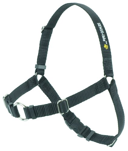 8. SENSE-ible No-Pull Dog Harness