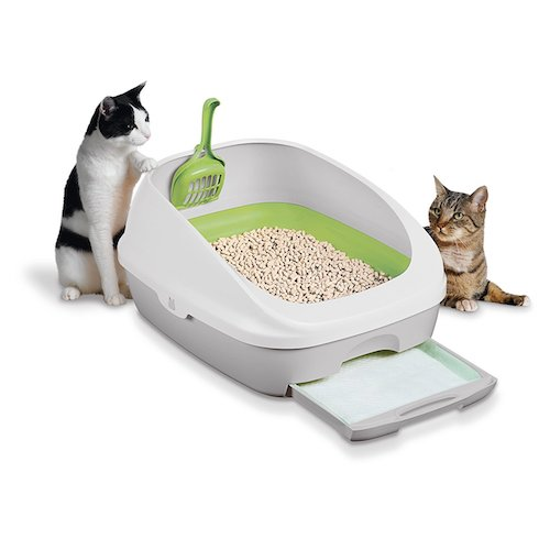 Top 10 Best Cat Litter Boxes in 2019 Reviews
