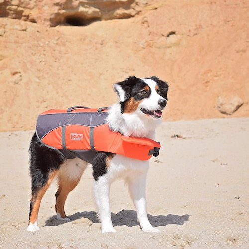 Top 10 Best Dog Life Jackets To Buy in 2019 Reviews