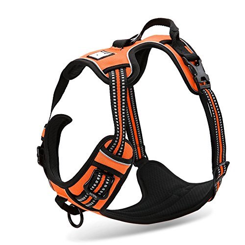 1. Chai's Choice Best Front Range Dog Harness. 3M Reflective Outdoor Adventure Pet Vest with Handle and Two Leash Attachments.