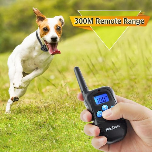 Best Dog Training Collars For Sale: 2. Petrainer PET998DBB dog training collar
