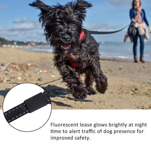 Top 10 Best Retractable Dog Leashes in 2018 Reviews