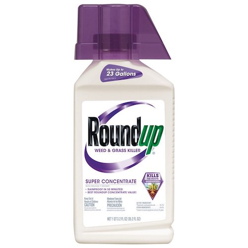 6. Roundup Weed and Grass Killer Super Concentrate, 35.2-Ounce