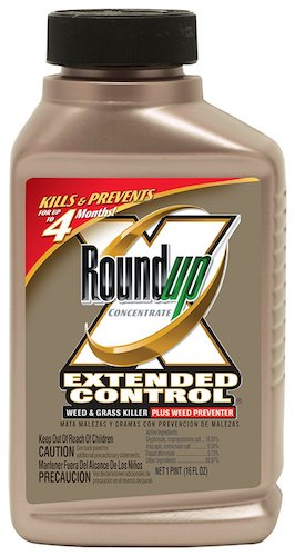 Best Grass & Weed Killers: 10. Roundup Extended Control Weed and Grass Killer Plus Weed Preventer II Concentrate, 16-Ounce