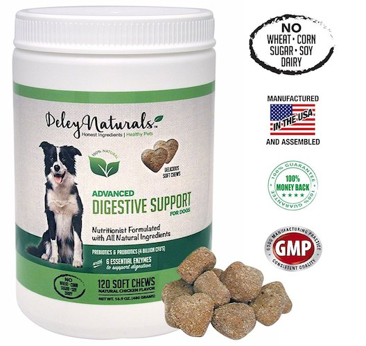 Best Probiotics for Dogs and Cats: 6. Deley naturals probiotic for dogs