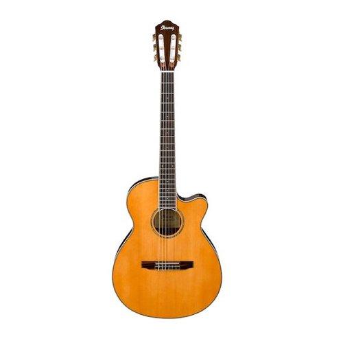 10. Ibanez AEG10NII Nylon String Cutaway Acoustic-Electric Guitar Black