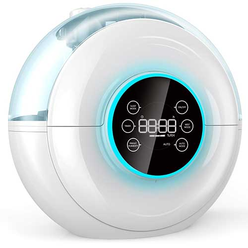 Top 10 Best Humidifier for Sinus Problems in 2019 Reviews