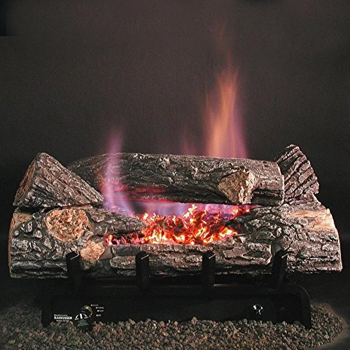 9. Rasmussen 18-inch Chillbuster See-thru Gas Log Set With Vent Free Propane Evening Embers Single Burner - Variable Flame Remote