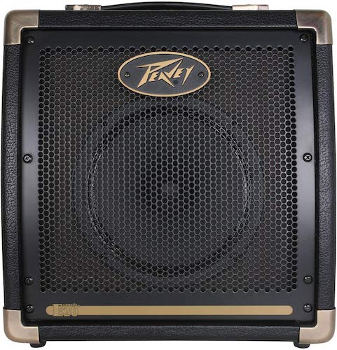 9. Peavey Ecoustic20 20W Acoustic Guitar Amplifier