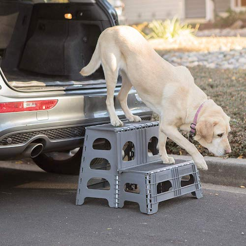 2. Range Kleen Petstep Gray Folding 2 Step Dog Assist