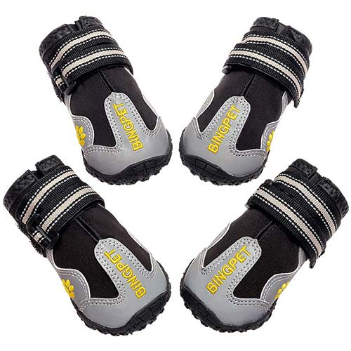 6. BINGPET Dog Boots Waterproof Shoes