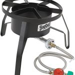 Top 10 Best Wok Burner For Outdoors in 2021 Reviews