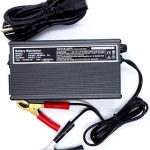 Top 10 Best Golf Cart Battery Chargers in 2021 Reviews